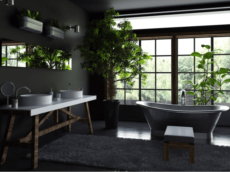 Black painted bathroom with natural accents